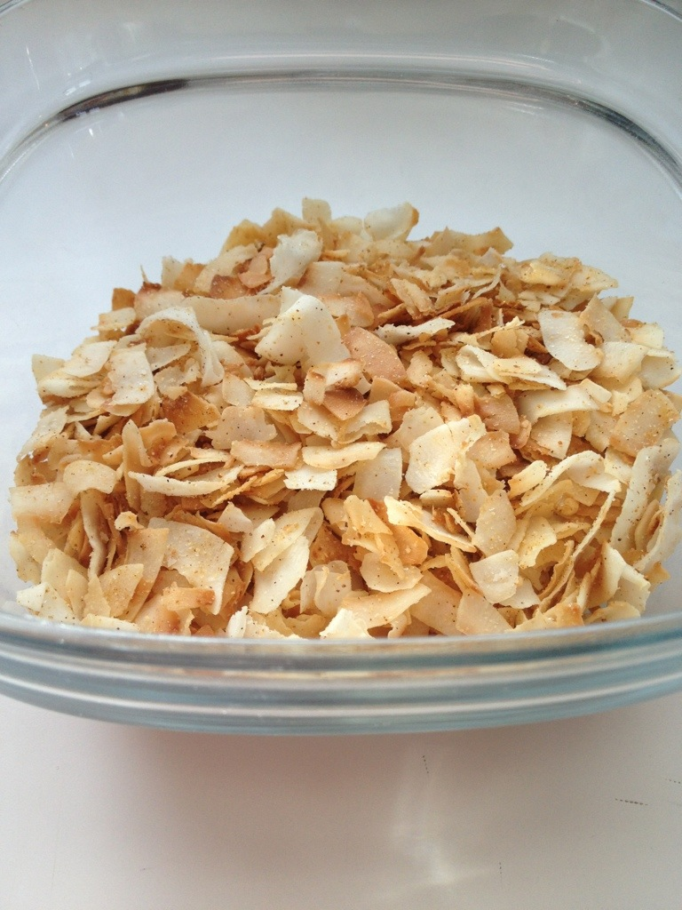 Toasted Coconut Snack Chips | Paleo Family Eats